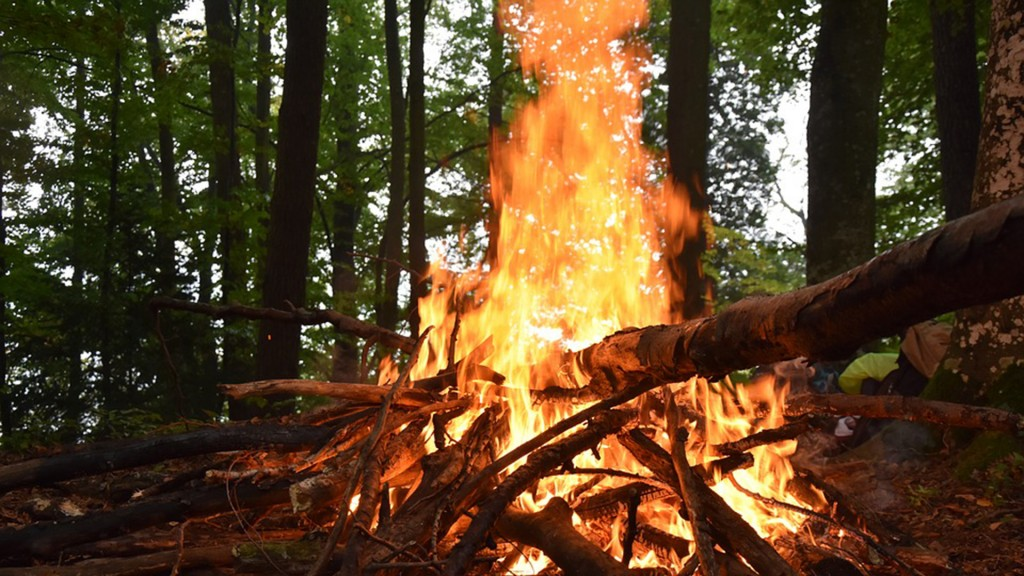 Lagerfeuer (Foto: pixabay/bbAAER)