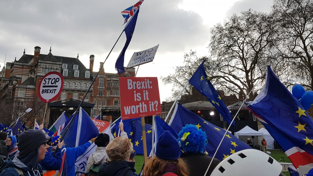 Archivbild: Anti-Brexit-Demo In London, Herbstr 2019 (Foto: Marten Hahn)